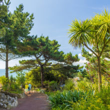 Bournemouth Tropical Gardens